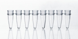 LLG-PCR-Tubes, 8er Strips mit separatem Deckelstreifen, PP